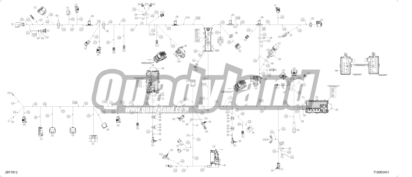 Câblage Principal - 710005451 - T & LTD